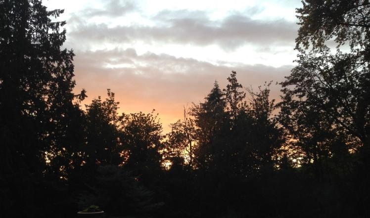 sunset-edited