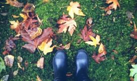 PicsArt_10-09-02.15.12.jpg