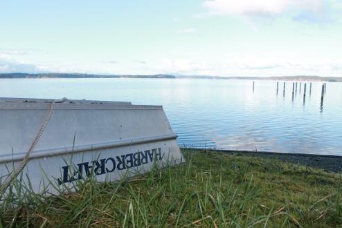 herron island, snickerdoodles (109)