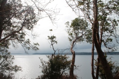 herron island, snickerdoodles (71)