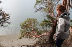 herron island, snickerdoodles (73)