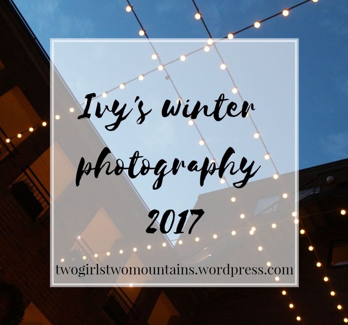 my holiday photography | the best of winter